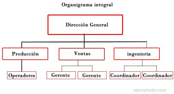 Ejemplo de organigrama for Estructura de una cocina industrial