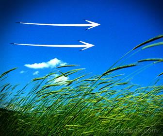 El aire es otro recurso renovable por pos ciclos que tiene