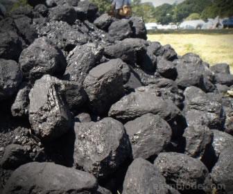El carbón mineral no se puede regenerar pues necesita millones de años