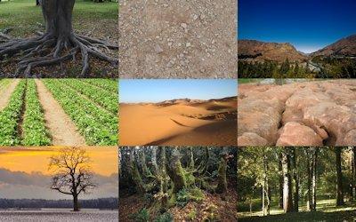 Caracter sticas de los suelos for Suelos y tipos de suelos