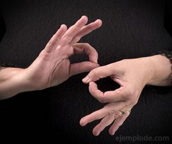 El lenguaje de señas está formado por gestos de las manos