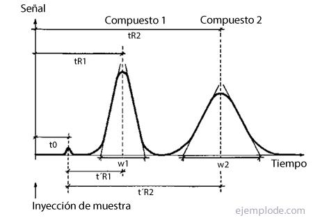 Ejemplo de Cromatograma