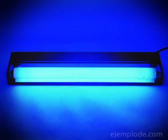 Lámpara de Luz Ultravioleta
