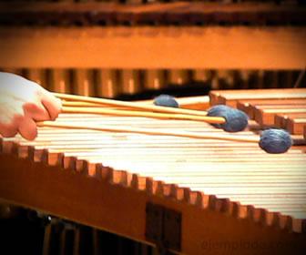 Marimba, instrumento de percusión determinado.