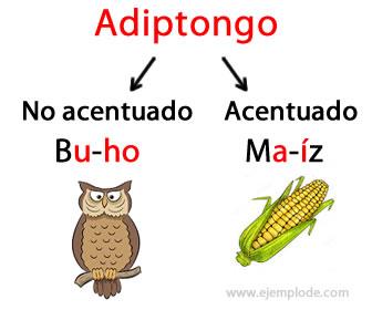 Los adiptongos son dos vocales seguidas que se pronuncian en diferente sílaba.