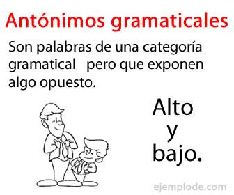 Antónimos gramaticales son las palabras que comparten categoría y que expresan conceptos contrarios.