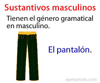 Los sustantivos masculinos son los que están en éste género gramatical.