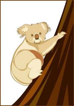 Texto narrativo del koala