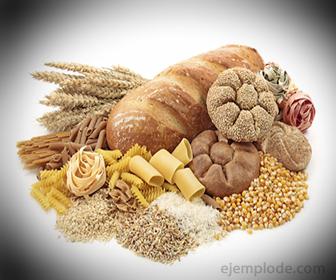Alimentos con alta cantidad de Carbohidratos