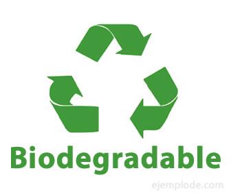 Logo biodegradable.