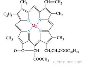 Estructura de Clorofila