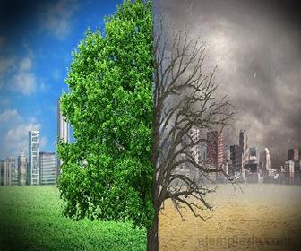 Estabilidad y peligros del efecto invernadero