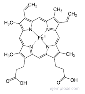 Estructura de Hemoglobina