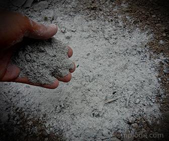 Materia inorganica: Cenizas