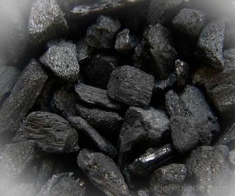 El carbono se encuentra en el carbón vegetal