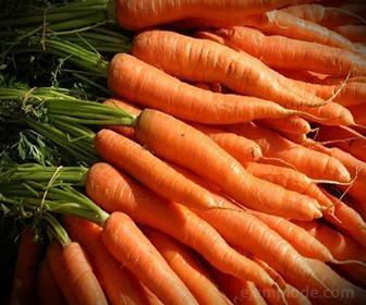 Caroteno en Zanahorias