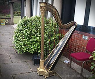 Un arpa es un instrumento cordófono simple.