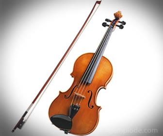 Los violines al igual que los violonchelos y las violas son instrumentos con arco.