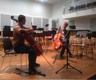 Los violonchelos o violas tienen brazo.